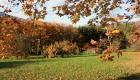 Parc-jardin-château-le-Clément